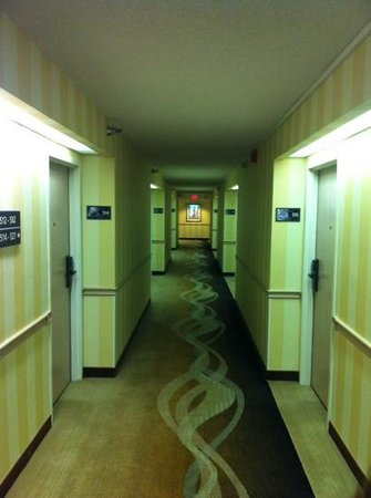 Hampton Inn Orlando Near Universal Blv / International Dr : 5 andar