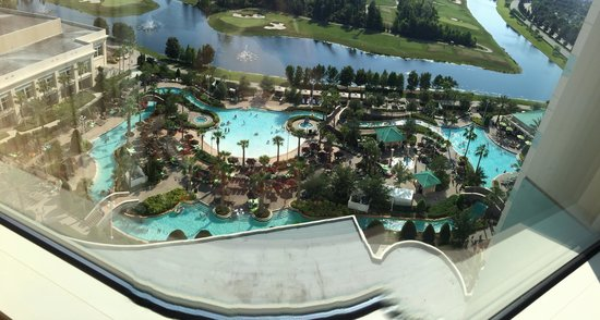 Hilton Orlando Bonnet Creek: Beautiful View! I can not wait to enjoy this pool during the day am the evening while watching a