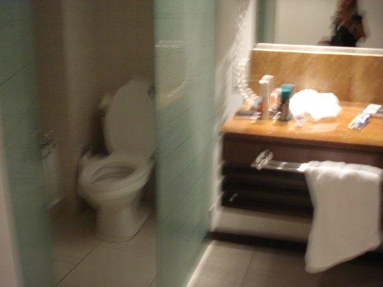 Radisson Decapolis Hotel Panama City: Water que da directo al espejo que mira la cama.