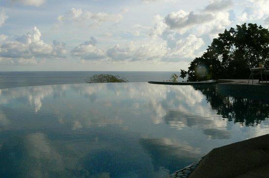 Monkey Flower Villas : view