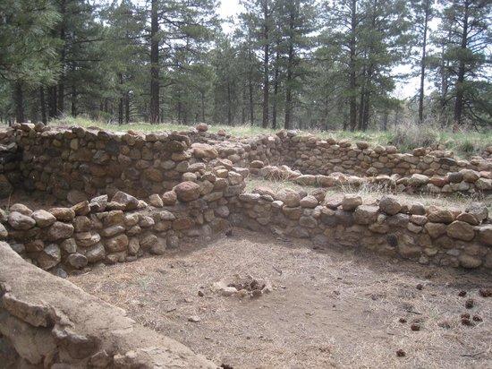 Elden Pueblo Ruins