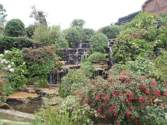 Doi Inthanon : fontaine