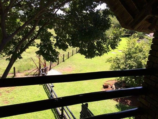 Bakubung Bush Lodge : View from room