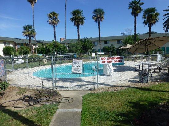 99 Palms Inn & Suites: Het zwembad