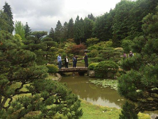 Washington Park Arboretum : Peaceful even with a group.