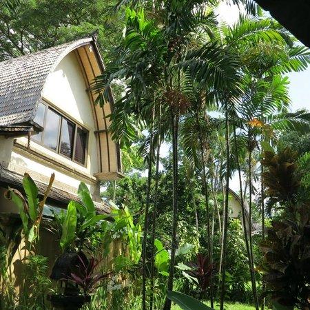 Hotel Vila Lumbung: Hotel