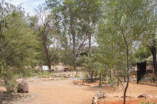 Olive Pink Botanic Garden: Part of the garden