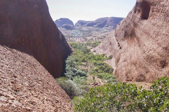 Kata Tjuta (The Olgas): Beautiful view from atop The Olgas