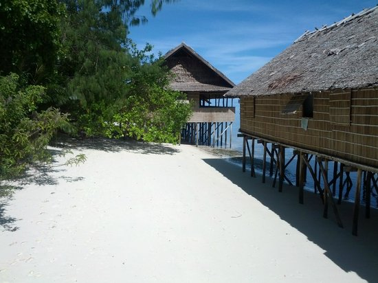 Kri Eco Resort : the bungalows at low tide