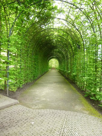 The Alnwick Garden : Walk Through archway