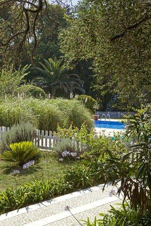 Pelecas Country Club: Pool
