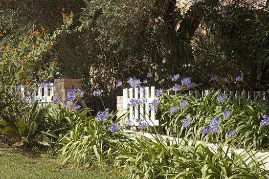 Pelecas Country Club: Gardens