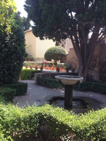 Just one if the beautiful gardens in the alcazaba