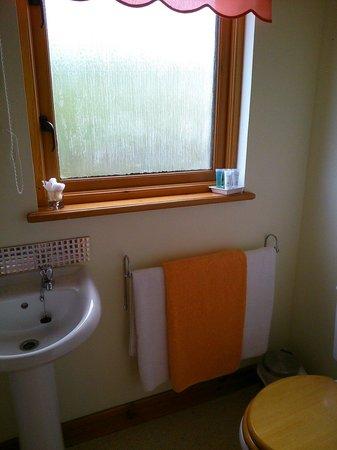 Loch Creran View : Una parte del baño con ducha