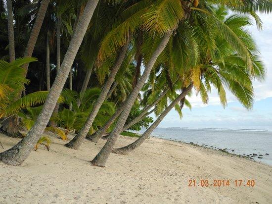 Sunhaven Beach Bungalows: Strand