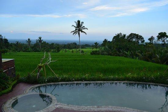 Hotel Batukaru: vue de la chambre