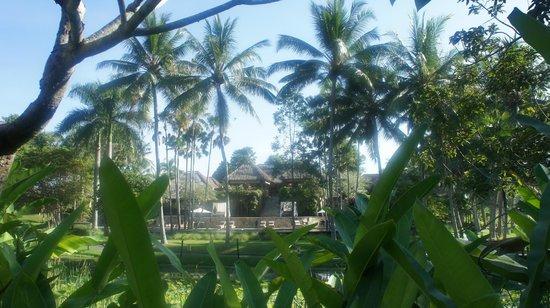 The Ubud Village Resort & Spa: 受付の写真