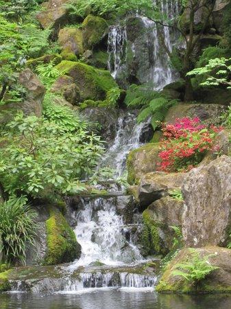 Portland Japanese Garden: Tranquil waterfall