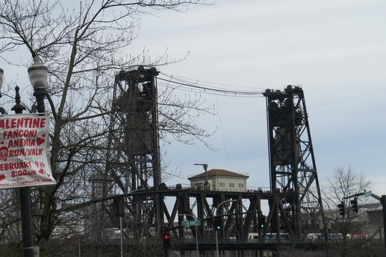 Tom McCall Waterfront Park: Steel Bridge