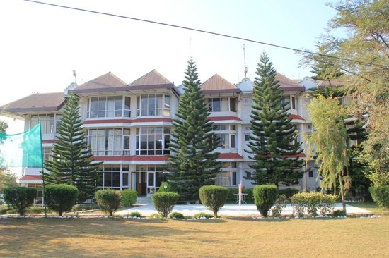 Club Mahindra Dharamshala: Backyard