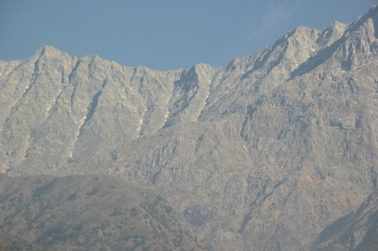 Club Mahindra Dharamshala: View from backyard