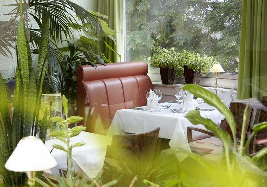 speisesaal picture of hotel noltmann peters bad rothenfelde tripadvisor. Black Bedroom Furniture Sets. Home Design Ideas