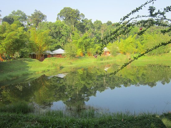 Kadkani River Resort: pool view from our DEN