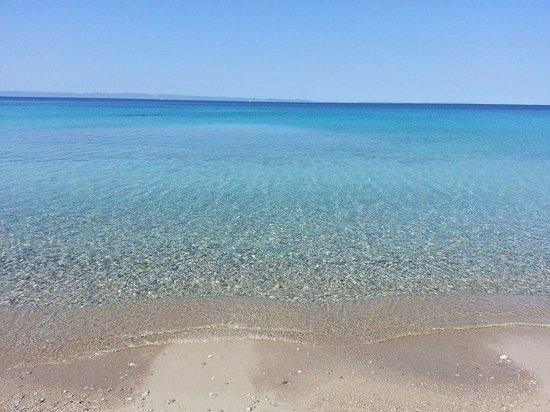 Hotel Makednos: Παραλία