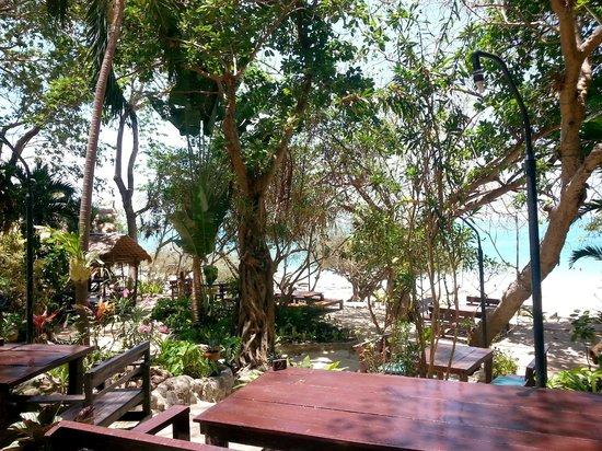 Ao Nuan Bungalows: sous les arbres
