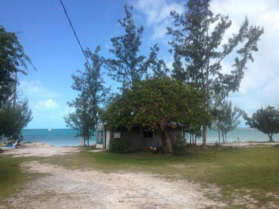 C Shells Guest Quarters : view of beach