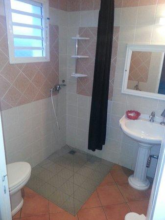 Le Relais Des Gouverneurs: La salle de bain. Rideau de diuche à revoir. 05/2014 Bebertosan.