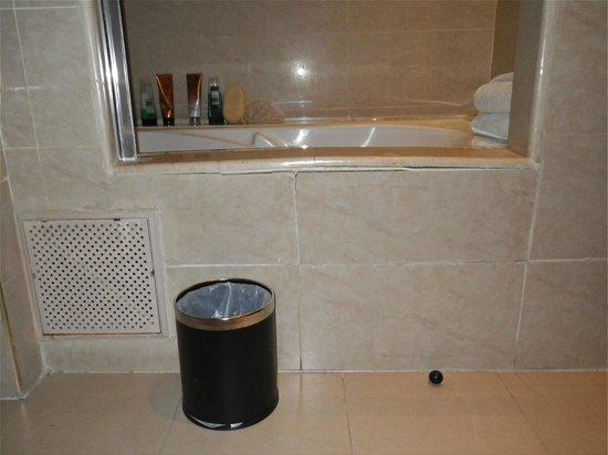 Opera Plaza Hotel: Restricted Shower/Bath entrance