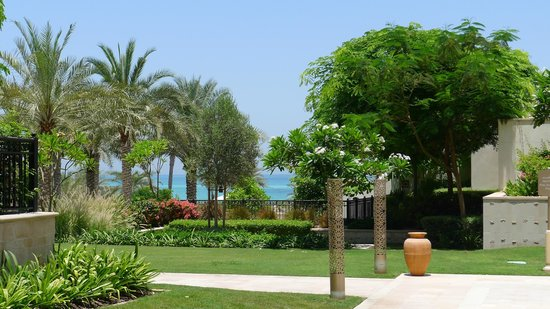 The St. Regis Saadiyat Island Resort: gardens