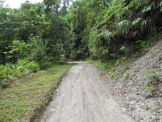 Tanah Aina Farrah Soraya Resort : On our ride up