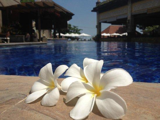 Pelangi Bali Hotel: View from rear of pool looking towards beach.