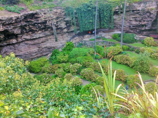Umpherston Sinkhole: Sinkhole from above