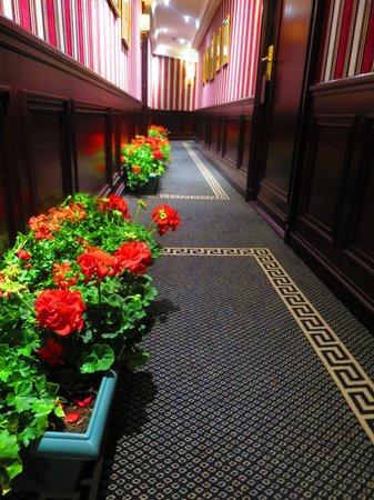 Hotel Napoleon Paris: 廊下