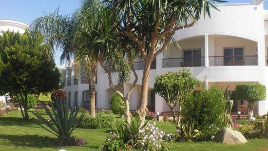 Grand Seas Resort Hostmark: Espaces verts superbe !!!!
