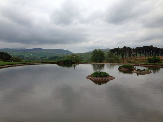 Tebay Services: View for the restaurant.