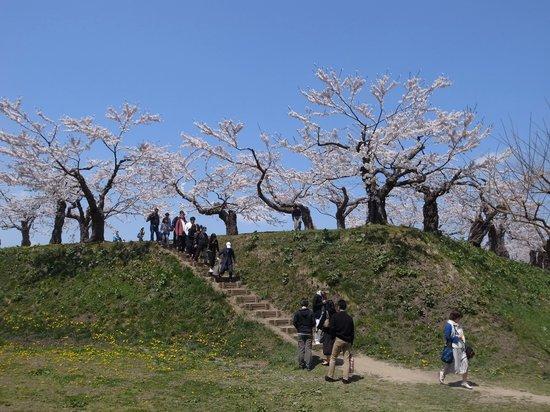 Goryokaku Park : 土塁の登り階段