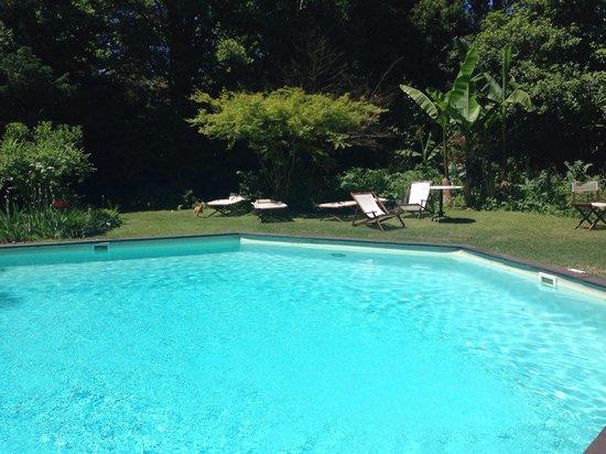 ristorante Gazebo: La piscina ...