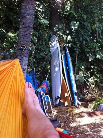 The Tiki Beach Hostel: Naptime