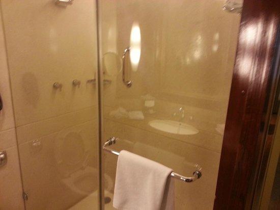 Vivanta by Taj - Blue Diamond: Bathroom
