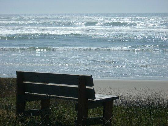 Silver Surf Motel: OUR BACKYARD