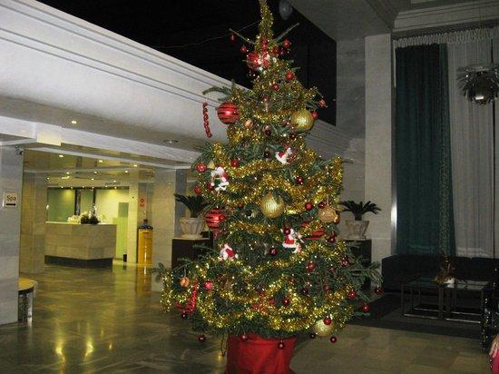 Marinas de Nerja Aparthotel: Christmas preparations