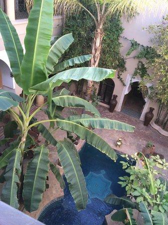 Riad Nabila: Views