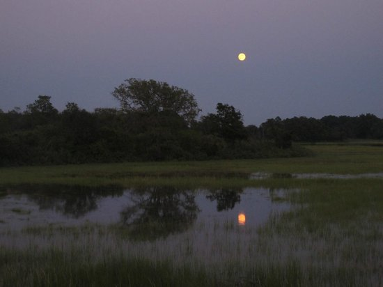 """Moon """"rising"""" viewed from Colt State Park"""