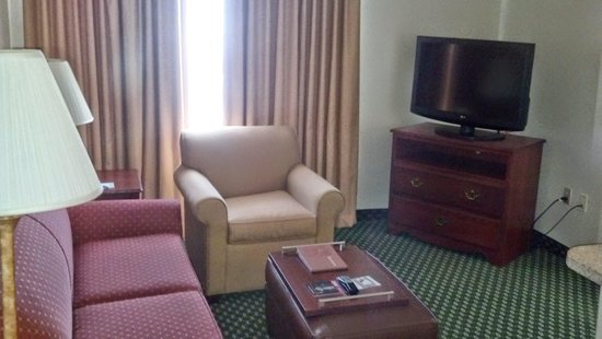 Homewood Suites by Hilton Dallas-Arlington : Living Room