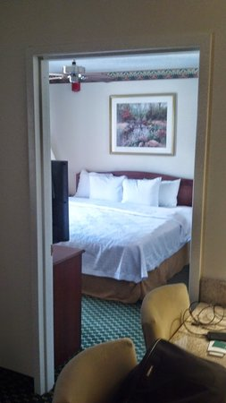 Homewood Suites by Hilton Dallas-Arlington : Bedroom