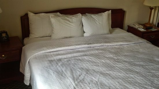 Homewood Suites by Hilton Dallas-Arlington : Bed